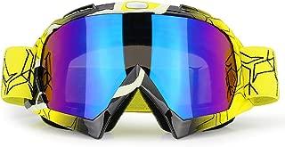 Best dirt bike goggles tinted Reviews