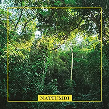Natiumbi