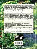 Koi im Gartenteich: Anlage und Wartung (NTV Garten) - 2