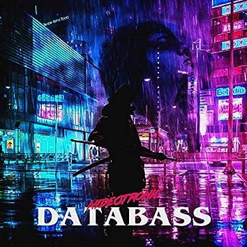 DataBass