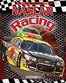 NASCAR Racing (Checkered Flag)
