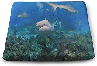 Seat Cushion Tiger Shark from Coral Reef Chair Cushion Inspiring Offices Butt Chair Pads for Indoor
