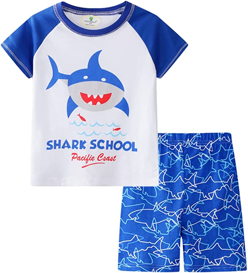 Boys Shark Summer Short Sleeve T Shirt Tops and Shorts Baby Outfit Tracksuit Clothing Set 4 Years Blue