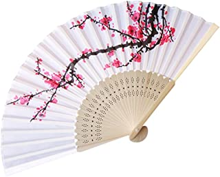 Best chinese hologram fan Reviews