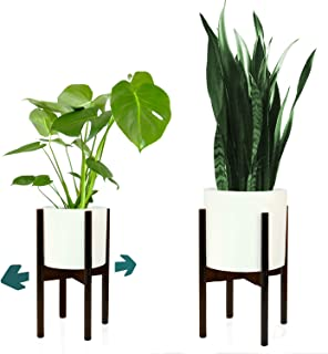 Best plant stand freedom Reviews