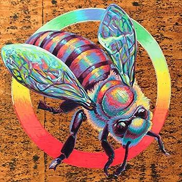Fundamental Thrive Hive