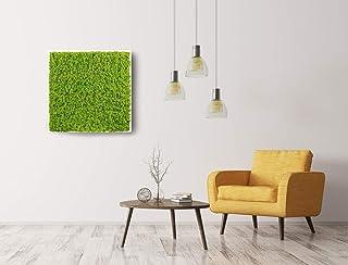 Quadro in lichene, Moss Frame, quadro in lichene stabilizzato, quadro vegetale, zero manutenzione
