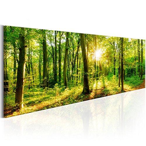 murando Acrylglasbild Wald 120x40 cm 1 Teile Wandbild auf Acryl Glas Bilder Kunstdruck Moderne Wanddekoration Waldlandschaft Natur Panorama Baum c-B-0184-k-a