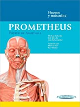 Prometheus. Póster de Anatomía. Huesos y músculos