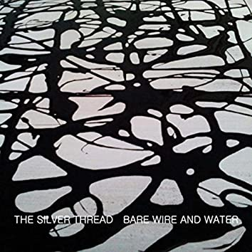 Bare Wire and Water