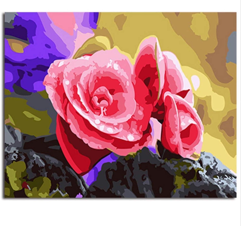 CZYYOU Bild Malerei & Kalligraphie Blaume DIY Malen Nach Zahlen Färbung Nach Zahlen Für Wohnkultur 40x50cm-Mit Rahmen B07PNG6ZQP | Moderater Preis