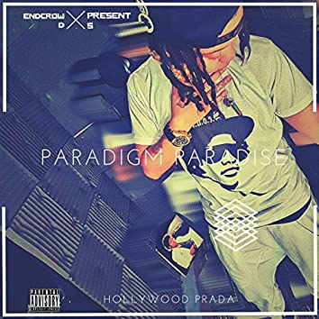 Paradigm Paradise
