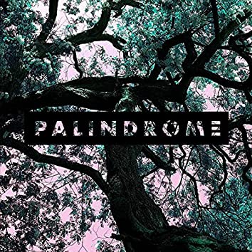 Palindrome (String Orchestra)