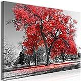 murando - Bilder Baum 120x80 cm Leinwandbild 1 TLG Kunstdruck modern Wandbilder XXL Wanddekoration Design Wand Bild - Bäume Natur Landschaft schwarz weiß rot c-B-0445-b-b