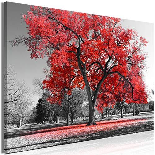 murando Quadro Albero 120x80 cm 1 pezzo Stampa su tela in TNT XXL Immagini moderni Murale Fotografia Grafica Decorazione da parete Alberi Natura Paesaggio nero bianco rosso c-B-0445-b-b