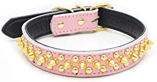 Avenpets Gorgeous Design Genuine Leather Dog Collar with Gold Spikes and Studs