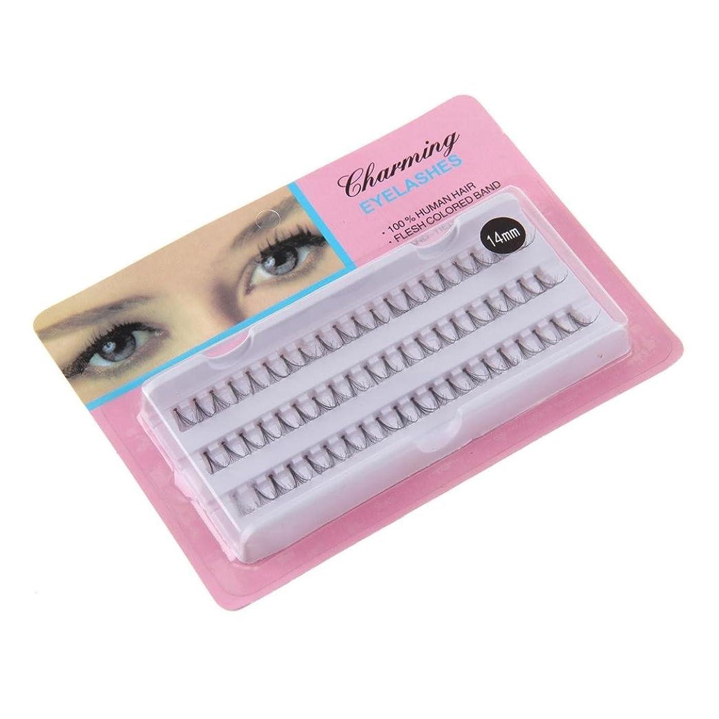 合併症同行する同化Feteso 1ボックス つけまつげ 上まつげ Eyelashes アイラッシュ ビューティー まつげエクステ レディース 化粧ツール アイメイクアップ 人気 ナチュラル 飾り 柔らかい 装着簡単 綺麗 極薄/濃密