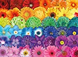 Buffalo Games - Blooms of Color - 1000 Piece Jigsaw Puzzle