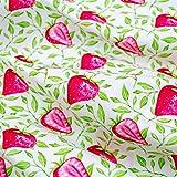 Emily&Joe's fabrics 100% Baumwolle Popeline (Kochfest)