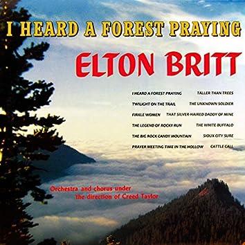 I Heard a Forest Praying