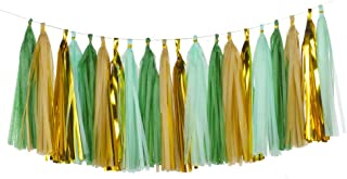 Best mint green and champagne gold Reviews