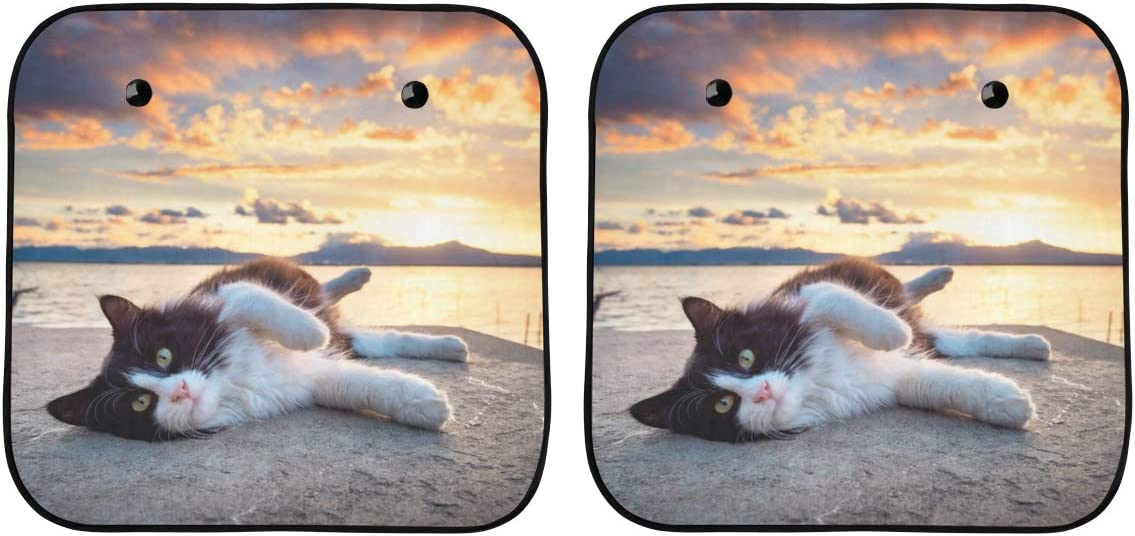 ENEVOTX Fun Car Sun Shade A Black Austin Mall White Lake Max 81% OFF The Lay and Cat by