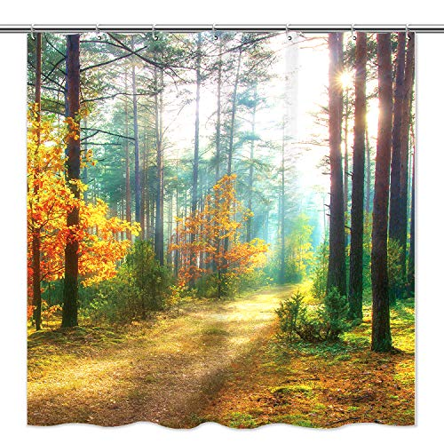 """Tititex Autumn Trees Scenery Shower Curtain, Shine in Fall Morning Forest Hopeful Scenery Waterproof Polyester Shower Curtain for Bathroom with 12 Hooks, 69""""x70""""Inches"""