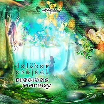 Precious Journey