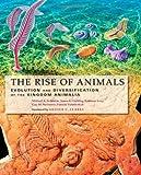 Fedonkin, M: Rise of Animals - Evolution and Diversification: Evolution and Diversification of the Kingdom Animalia - Mikhail A. Fedonkin
