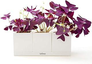 LeGrow Smart Garden Indoor Planter Starter Kit - 3 Patented Design Plant Pots,1 Water Holding Base Tray - (...