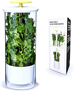 Best herb storage container Reviews