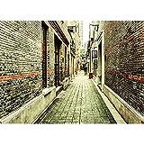 Fondo de fotografía estéreo de Vinilo, fotografía de Tema de Paisaje de Carretera, Accesorios de Fondo para fotografía de Estudio, A23, 7x5ft / 2,1x1,5 m