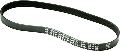 BAC-28-10M-150 ACE PUMPS, Belt, Poly-V, 10 groove (for PTOC-150-1000)