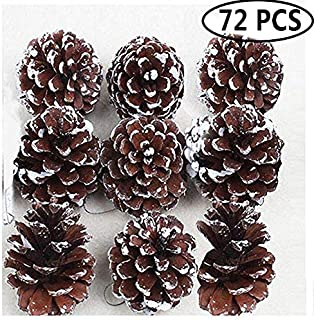 Best pinecone ornaments kids Reviews