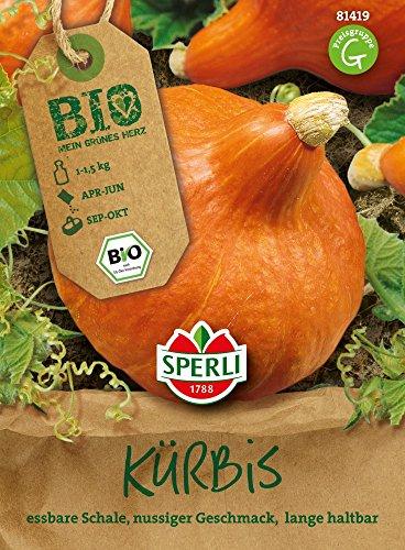 Kürbissamen - Bio-Kürbis (Hokkaido) Solor - Bio-Saatgut von Sperli-Samen
