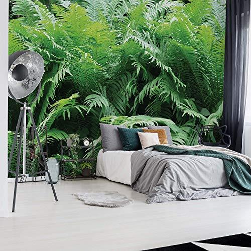 Grüner Farn Wald Fototapete Fotomural - Wandbild - Tapete - 254cm x 184cm / 2 Teilig - Gedrückt auf 115gsm Muralpapier - 10111P4 - Pflanzen