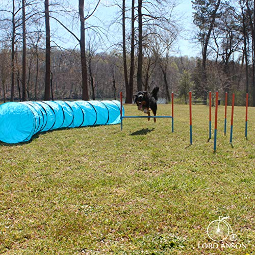 Lord Anson Dog Agility Set - Dog Agility Equipment - 1 Dog Tunnel, 6 Weave Poles, 1 Dog Agility Jump - Canine Agility Set for Dog Training, Obedience, Rehabilitation