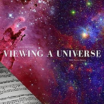 Viewing a Universe