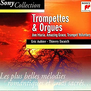 Trompettes et orgues, trumpet and organ