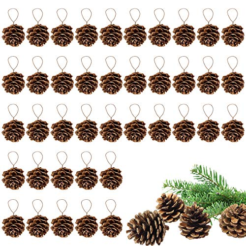 Apipi 40 Pieces Rustic Pine Cones Ornaments -Christmas Natural Pine Cones Ornament with String for Gift Tag Tree Home Party, Fall Christmas Hanging Decoration ,DIY Crafts