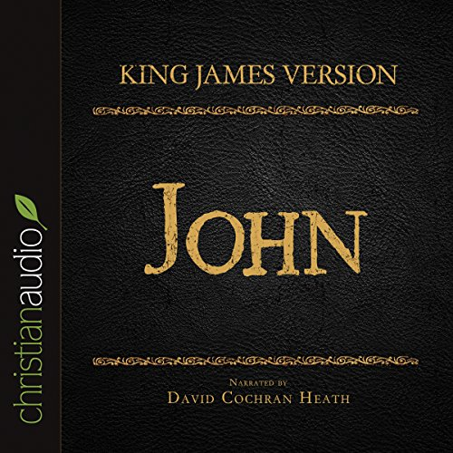 Holy Bible in Audio - King James Version: John audiobook cover art