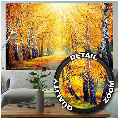 GREAT ART XXL Poster – Autunno Dorato – Decorazione da Parete Betulle Bosco Natura Paesaggio Albero Viale Strada Autunno Sole Stagioni Parco Foresta Fotomurale 140 x 100 cm
