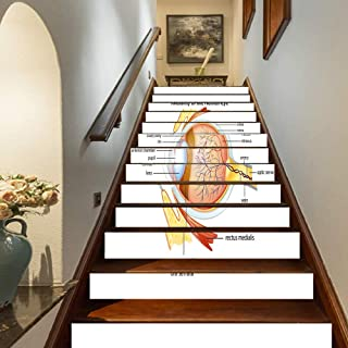 Marteylink Educational Staircase Stickers,Human Eye Anatomy Cornea Iris Pupils Optic Nerves Graphic Print Decorative Self-Adhesive Wall Stair Stickers Mural Wallpaper for Home Decor,39.3