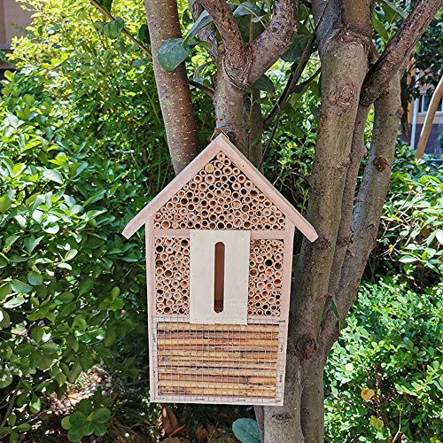 Your's Bath Wooden Insect Hotel, Natural Bee Hotel House, Bug Hotel Shelter Garden Nest Box for Ladybirds, Butterflies, Wild Bees & many other Species 29.5x15x4 cm