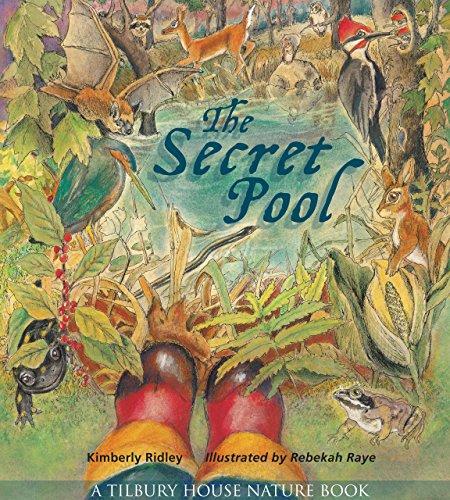 The Secret Pool (Tilbury House Nature Book) (English Edition)