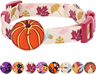 Blueberry Pet 10 Designs Fall Halloween Thanksgiving Designer Dog Collars, Collar Covers