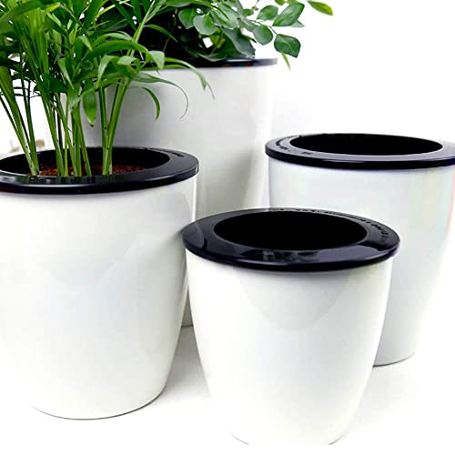 large plant pots for trees, large potted plants, natural spring decorative plant containers, large outdoor glazed pots, on decorative large house plant containers.html