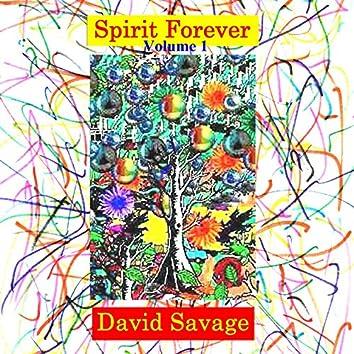 Spirit Forever Volume 1