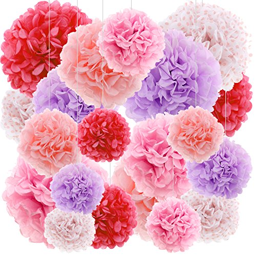 Pink Red DIY Tissue Paper Pom Poms Flowers Party Decorations Backdrop, 20 pcs