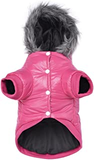 LESYPET Dog Warm Winter Coat - Waterpoof Paded Warm Hoodie Jacket for Puppy Small Dogs